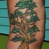 rib-tree